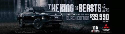 hp-triton-x557
